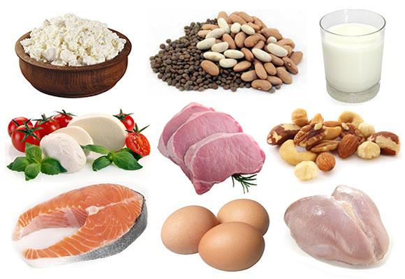 protein-potraviny